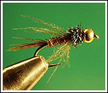 Bead head Pheasant Tail, photo by Sean Andrews