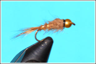 Nymph with gold bead head
